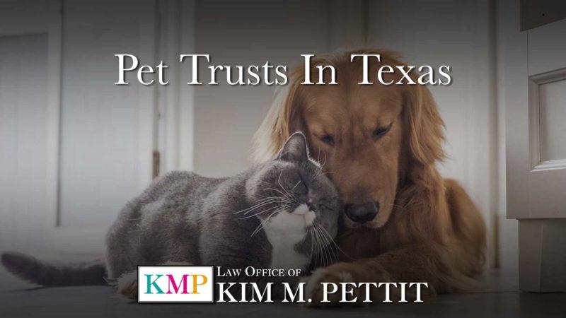 Pet Trusts in Texas Kim Pettit Law